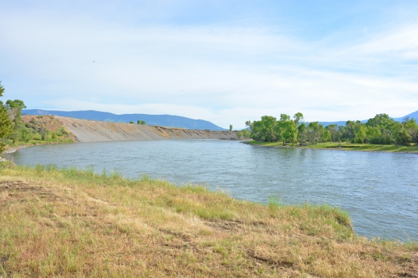 Montana fishing reports gallatin yellowstone and tattoo for Gallatin fishing report