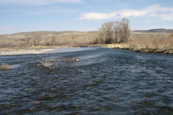 Montana fly fishing reports montana troutfitters for Gallatin fishing report